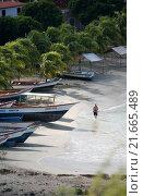 Купить «SOUTH AMERICA VENEZUELA ISLA MARGATITA PEDRO GONZALEZ BEACH», фото № 21665489, снято 18 октября 2019 г. (c) PantherMedia / Фотобанк Лори