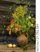 Осенний натюрморт с яблоками, калиной и хмелем. Стоковое фото, фотограф Алексей Лобанов / Фотобанк Лори