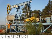Нефтяная установка. Стоковое фото, фотограф Матвеева Елизавета / Фотобанк Лори