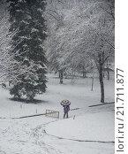 Купить «Зимний парк», фото № 21711877, снято 3 апреля 2015 г. (c) Елена Корнеева / Фотобанк Лори