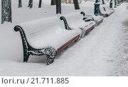 Купить «Заснеженные скамейки в Александровском саду», фото № 21711885, снято 17 января 2016 г. (c) Елена Корнеева / Фотобанк Лори