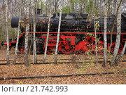 Купить «Berlin, Germany, a steam locomotive in the nature park Schoeneberger Südgelände», фото № 21742993, снято 18 ноября 2012 г. (c) Caro Photoagency / Фотобанк Лори