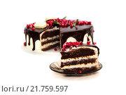 Шоколадный торт, вид сбоку. Стоковое фото, фотограф Игорь Кошляев / Фотобанк Лори