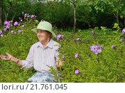 Купить «Пожилая женщина рядом с сиреневыми флоксами на приусадебном участке», фото № 21761045, снято 26 июля 2015 г. (c) Максим Мицун / Фотобанк Лори