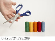 Купить «Multicolor Threads And A Hand With Scissor», фото № 21795289, снято 23 января 2019 г. (c) PantherMedia / Фотобанк Лори