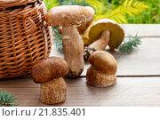 Купить «Mushrooms on a wooden table. Autumn fruits», фото № 21835401, снято 18 июля 2018 г. (c) BE&W Photo / Фотобанк Лори