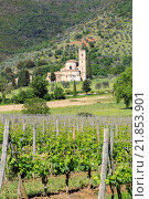 Купить «Abbey Sant'Antimo, Castelnuovo dell'Abate, district of Montalcino, Province Siena, Tuscany Province, Italy», фото № 21853901, снято 14 мая 2014 г. (c) age Fotostock / Фотобанк Лори