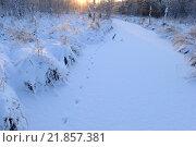 Лес заснеженная река  следы животных к восходящему солнцу. Стоковое фото, фотограф Сергей Кудрявцев / Фотобанк Лори
