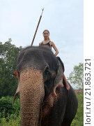 Купить «Женщина сидит на слоне», фото № 21863721, снято 14 декабря 2018 г. (c) Некрасов Андрей / Фотобанк Лори