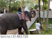 Купить «Женщина катается на слоне», фото № 21863725, снято 14 декабря 2018 г. (c) Некрасов Андрей / Фотобанк Лори