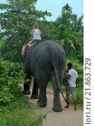 Купить «Женщина катается на слоне», фото № 21863729, снято 14 декабря 2018 г. (c) Некрасов Андрей / Фотобанк Лори