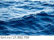 Купить «Blue Sea surface», фото № 21882709, снято 22 июля 2019 г. (c) PantherMedia / Фотобанк Лори