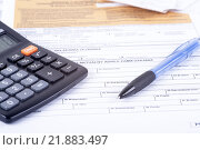 Купить «tax declaration pit», фото № 21883497, снято 18 ноября 2018 г. (c) PantherMedia / Фотобанк Лори