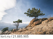 Купить «Landscape in Rocky Mountains National Park», фото № 21885905, снято 19 сентября 2018 г. (c) PantherMedia / Фотобанк Лори
