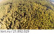 Купить «Вид на лес с высоты птичьего полета», фото № 21892029, снято 15 сентября 2014 г. (c) Юрий Губин / Фотобанк Лори