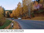 Осенний лес вдоль дороги. Стоковое фото, фотограф Владимир Иванов / Фотобанк Лори