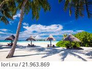 Купить «Deck chairs under umrellas and palm trees on a beach», фото № 21963869, снято 17 февраля 2019 г. (c) PantherMedia / Фотобанк Лори