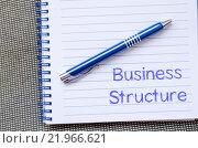 Купить «Business structure write on notebook», фото № 21966621, снято 15 октября 2019 г. (c) PantherMedia / Фотобанк Лори