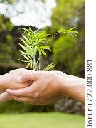 Купить «Young couple holding a sapling», фото № 22000881, снято 9 сентября 2015 г. (c) Wavebreak Media / Фотобанк Лори