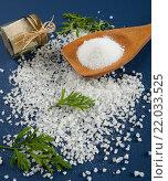 Купить «Соль крупного и тонкого помола», фото № 22033525, снято 23 марта 2015 г. (c) Olesya Tseytlin / Фотобанк Лори
