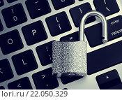 Купить «Открытый замок на клавиатуре компьютера», фото № 22050329, снято 3 марта 2016 г. (c) M.G / Фотобанк Лори