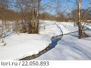 Купить «Река Скорогодайка в конце зимы», фото № 22050893, снято 28 февраля 2016 г. (c) Елена Коромыслова / Фотобанк Лори