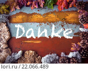Купить «german 'Danke' (thank you) on wooden board», фото № 22066489, снято 21 января 2019 г. (c) PantherMedia / Фотобанк Лори