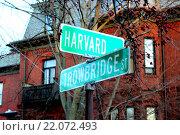 Гарвардский университет, США. Дорожный указатель на столбе (2016 год). Стоковое фото, фотограф Олеся Рукина / Фотобанк Лори