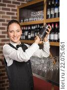 Купить «Barmaid shaking a cocktail», фото № 22075061, снято 24 октября 2015 г. (c) Wavebreak Media / Фотобанк Лори