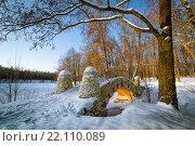 Купить «Зимний солнечный вид на мост в парке Кузьминки», фото № 22110089, снято 19 января 2014 г. (c) Соболев Игорь / Фотобанк Лори