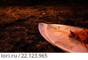 Доска для серфинга на земле (2015 год). Стоковое фото, фотограф Alain Gerbault / Фотобанк Лори