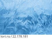 Купить «Ледяные узоры», фото № 22178181, снято 21 февраля 2010 г. (c) Dina / Фотобанк Лори
