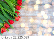 Купить «close up of red tulips on wooden background», фото № 22225089, снято 3 марта 2015 г. (c) Syda Productions / Фотобанк Лори
