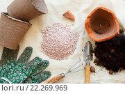 Куча минеральных удобрений среди садовых инструментов. Горшки, земля, перчатки, совок. Стоковое фото, фотограф Татьяна Кузьмина / Фотобанк Лори