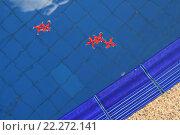 Цветы в бассейне (2015 год). Стоковое фото, фотограф Евгений Тиняков / Фотобанк Лори