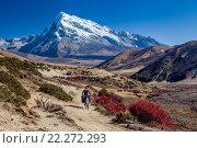 Путешественник на велосипеде на тропе среди гор. Стоковое фото, фотограф Евгений Дубинчук / Фотобанк Лори