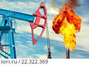 Купить «Нефтяная качалка на фоне факела», фото № 22322369, снято 4 июня 2015 г. (c) Икан Леонид / Фотобанк Лори