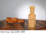 Король умер... Да здравствует король! Стоковое фото, фотограф Николай Куницкий / Фотобанк Лори