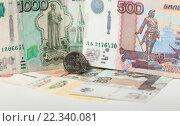 Купить «Монета 1 рубль и купюры 1000 и 500 рублей», эксклюзивное фото № 22340081, снято 24 марта 2016 г. (c) Яна Королёва / Фотобанк Лори