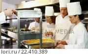 Купить «Group of chefs giving plates on order line», видеоролик № 22410389, снято 22 июля 2018 г. (c) Wavebreak Media / Фотобанк Лори