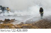 Купить «Пожарные тушат подожженную сухую траву на фоне домов», фото № 22426889, снято 1 апреля 2016 г. (c) Игорь Малеев / Фотобанк Лори