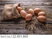 Fresh farm eggs. Стоковое фото, фотограф Cseh Ioan / PantherMedia / Фотобанк Лори