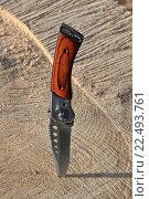 Купить «Складной нож воткнут в распиленное дерево в солнечных лучах», фото № 22493761, снято 20 марта 2016 г. (c) Максим Мицун / Фотобанк Лори