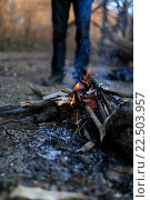 Человек у костра в лесу, эксклюзивное фото № 22503957, снято 5 апреля 2016 г. (c) Яна Королёва / Фотобанк Лори