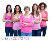 Купить «Smiling women in pink outfits posing for breast cancer awareness», фото № 22512405, снято 20 ноября 2015 г. (c) Wavebreak Media / Фотобанк Лори