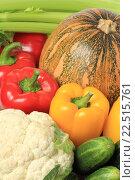 Купить «Свежие овощи крупным планом», фото № 22515761, снято 9 октября 2011 г. (c) Георгий Марков / Фотобанк Лори