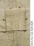 Купить «Фрагмент старой военной палатки», фото № 22524429, снято 13 июля 2013 г. (c) Дмитрий Грушин / Фотобанк Лори