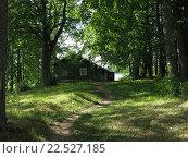 Домик в лесу. Стоковое фото, фотограф Дарья Петрова / Фотобанк Лори