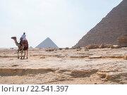 Египтянин, сидящий на верблюде на фоне пирамиды (2007 год). Редакционное фото, фотограф Виталий Куликов / Фотобанк Лори