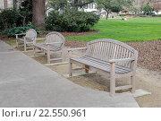 Купить «Деревянные скамейки для отдыха в городском парке», фото № 22550961, снято 22 мая 2019 г. (c) Vladimir Sviridenko / Фотобанк Лори